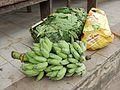 Green Bananas (30594163273).jpg