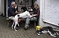 Greyhounds, a pub, Keswick. - panoramio.jpg