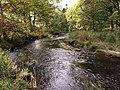 Gryfe Water - geograph.org.uk - 1524660.jpg
