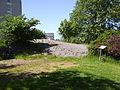 Hällristningar vid Egna hem i Hageby - Norrköping, den 23 maj 2007, bild 25.JPG