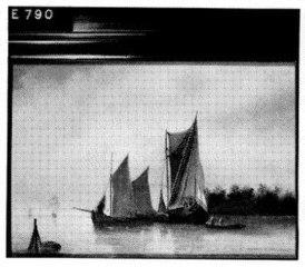 Sailboats in a estuary