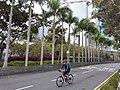 HK SW 上環 Sheung Wan 民光街 Man Kwong Street near 中環 Centrel Ferry Piers 維多利亞海港 Victoria Harbour February 2020 SS2 01.jpg