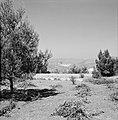 Hadassah universistair medisch centrum gezien vanaf de Mount Herzl, Bestanddeelnr 255-4919.jpg