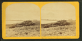 Hampton Beach from Boar's Head Hotel, from Robert N. Dennis collection of stereoscopic views.png