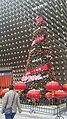 Happy Spring Festival of Chinese New Year in Dalian (1st Round Photography) - Transformed Spring Festival Tree.jpg