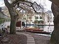 Hardy Visitors - geograph.org.uk - 1131570.jpg
