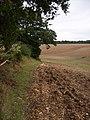 Harewood Forest - Field Edge - geograph.org.uk - 941628.jpg