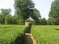 Harmonist Labyrinth pathway.jpg