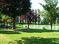 Haveluy (Nord, Fr), étang de la Fontaine 02.JPG