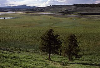 Hayden Valley landform