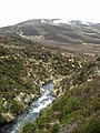 Headwaters of the Alltan Driuchd - geograph.org.uk - 109485.jpg