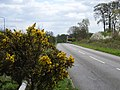Hedgerley Lane, near Beaconsfield - geograph.org.uk - 162817.jpg