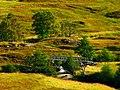 Here Were Many Scottish Midges - panoramio.jpg