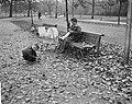 Herfststemming in Amsterdam. In het Vondelpark, Bestanddeelnr 913-1152.jpg