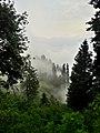 Hide n seek in clouds - Place is Siri Paye.jpg