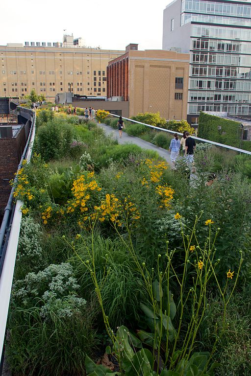 High Line, New York 2012 30
