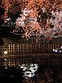 Himeji-jō sakura4.jpg