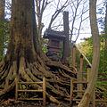 Himezuka (Shakujii Park) 2012-04-15.jpg