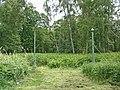 Holme Fen, Cambridgeshire (48092344192).jpg