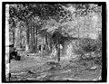 Hoover camp on the Rapidan, 8-17-29 LCCN2016843919.jpg