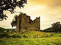 Hopton Castle -2.jpg