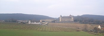 IMG Vignoble de Rully.JPG
