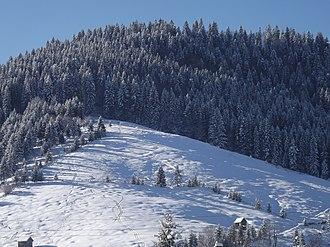 Suceava County - Image: Iarna panoramio (7)