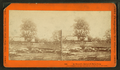 In Trossel's barnyard, Gettysburg (showing dead animals), by Taylor & Huntington.png