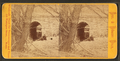 Inlet to Silver Brook, Schuylkill River, from Robert N. Dennis collection of stereoscopic views.png