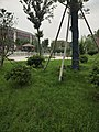 Inner View in Funan No.1 Senior High School.jpg