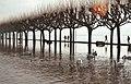 Inondation lac du Bourget (1990).jpg