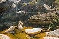 Itabira - State of Minas Gerais, Brazil - panoramio (82).jpg