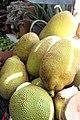 Jackfruit in a Tijuana market 5491.jpg