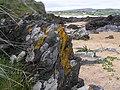 Jaggy rock, Culdaff - geograph.org.uk - 1338697.jpg