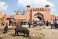 Jaipur-2015-03-17-3.jpg