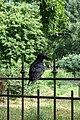 Jardin des Plantes @ Paris (28110339782).jpg