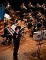 Jazz Diplomats 2014.jpg