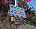 Jerusalem Mount of Olives -- heading to the lookout point (6036443146).jpg