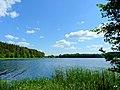 Jezioro Sępoleńskie widok z ścieżki przy brzegu. - panoramio (1).jpg