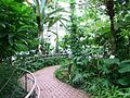 Jindai Botanical Garden-7.jpg