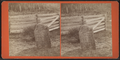 John Brown's Grave at North Elba, N.Y, by J. C. Moulton 3.png