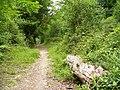 Juniper Hill - geograph.org.uk - 460537.jpg