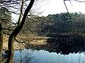 Kampsheide nabij Rolde Drenthe1.jpg