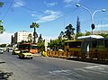Karim Khan Zand Boulevard Shiraz (1).jpg