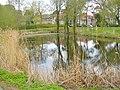 Karolinenhof - Dorfteich (Village Pond) - geo.hlipp.de - 35732.jpg