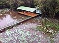Khu chòi canh vuon quoc gia Tram Chim, Tam Nong, Dong thap - panoramio.jpg