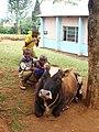 Kids at Maringa Chini Primary School, Tanzania - panoramio (5).jpg