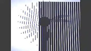 Barrier grid animation and stereography