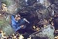 Kis-Sárkány-barlang.jpg