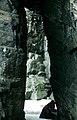 Kittiwake Cape Graham Moore 6 1995-06-10.jpg